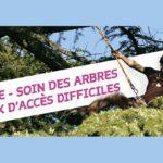 CARTE DE VOEUX / Le Jardin de Rabelais