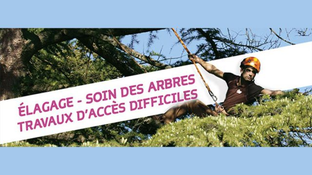 FLYERS À DOUBLE IDENTITÉ / L'Art et la Matière et Altitude élagage