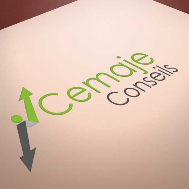 219 Consulting est une agence de communication à Saint Avertin qui s'occupe de la création de vos logos.