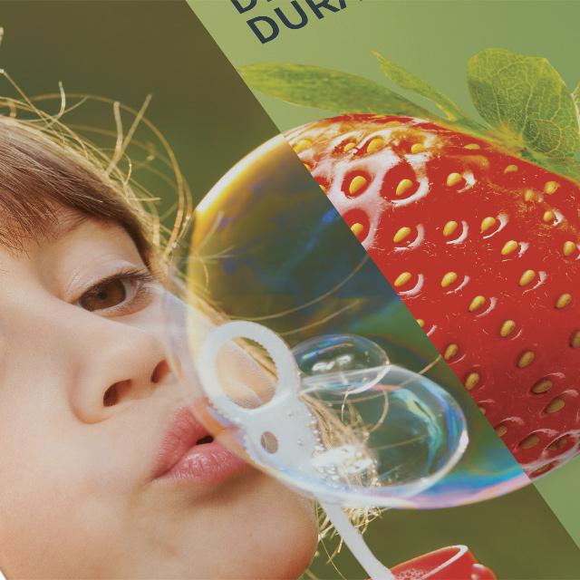 219 Consulting, a crée le rapport de développement durable pour Demain la Terre.